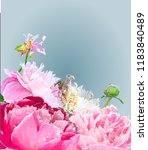 a picturesque peony flower.... | Shutterstock .eps vector #1183840489