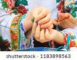 chernivtsi  ukraine   september ... | Shutterstock . vector #1183898563