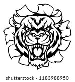 a tiger angry animal sports...   Shutterstock . vector #1183988950