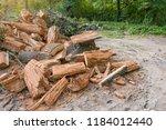 heap of old felled tree stumps... | Shutterstock . vector #1184012440
