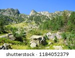 mountain landscape near the... | Shutterstock . vector #1184052379