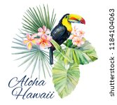 Aloha Hawaii With Toucan....