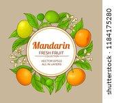 mandarin vector frame | Shutterstock .eps vector #1184175280