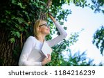 woman blonde take break... | Shutterstock . vector #1184216239