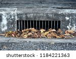 Fallen Leaves Piled In Front Of ...