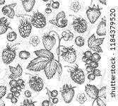 hand drawn sketch seamless... | Shutterstock .eps vector #1184379520