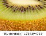 kiwi fruit texture background... | Shutterstock . vector #1184394793
