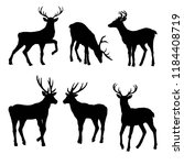 Deer Silhouettes  Vector ...
