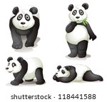 illustration of a panda on a...   Shutterstock .eps vector #118441588