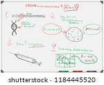 white board with a schematic... | Shutterstock .eps vector #1184445520