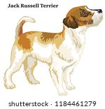 portrait of standing in profile ... | Shutterstock .eps vector #1184461279