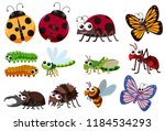 a set of insect illustration | Shutterstock .eps vector #1184534293