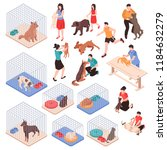 animal shelter with dogs and... | Shutterstock .eps vector #1184632279