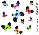 color beautiful butterflies ... | Shutterstock .eps vector #1184642539
