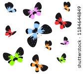 color beautiful butterflies ... | Shutterstock . vector #1184644849