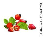 beautiful fragrant rosehip.... | Shutterstock .eps vector #1184735260