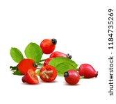 beautiful fragrant rosehip.... | Shutterstock .eps vector #1184735269