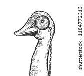 goose bird witn monocle... | Shutterstock .eps vector #1184772313