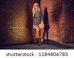 beautiful fashionable woman... | Shutterstock . vector #1184806783
