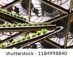 milan  italy  october 28 2015 ...   Shutterstock . vector #1184998840