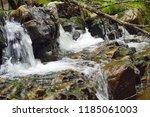 plodda falls is a waterfall 5...   Shutterstock . vector #1185061003