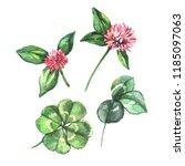 watercolor sketch clover | Shutterstock . vector #1185097063
