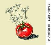 illustration of a ripe tomato... | Shutterstock .eps vector #1185098983