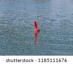 red buoy in sava river belgrade ... | Shutterstock . vector #1185111676
