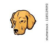 labrador retriever dog   vector ... | Shutterstock .eps vector #1185139093