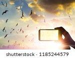 tourist holding smartphone... | Shutterstock . vector #1185244579