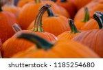 high resolution photo of a... | Shutterstock . vector #1185254680