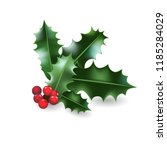 holly christmas element | Shutterstock .eps vector #1185284029