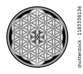 flower of life   intersecting... | Shutterstock .eps vector #1185558136