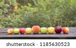 a lot of different color  shape ... | Shutterstock . vector #1185630523