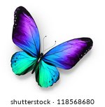 Stock photo blue violet butterfly isolated on white 118568680