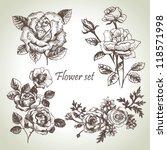 floral set. hand drawn... | Shutterstock .eps vector #118571998