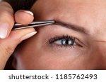 close up of a woman's hand...   Shutterstock . vector #1185762493