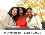 friends laughing and having a...   Shutterstock . vector #1185862579