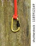 metal carabine for... | Shutterstock . vector #1185912169