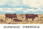 rural landscape with cows. hand ... | Shutterstock .eps vector #1186002616