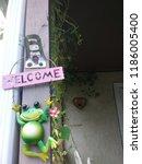 Outdoor Welcoming Frog