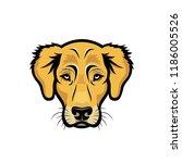 golden retriever dog   isolated ... | Shutterstock .eps vector #1186005526