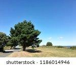 landscape from bembridge isle... | Shutterstock . vector #1186014946