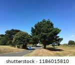 landscape from bembridge isle... | Shutterstock . vector #1186015810