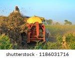 crop of soya beans processing... | Shutterstock . vector #1186031716