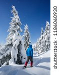 hiking in the winter with... | Shutterstock . vector #1186060930