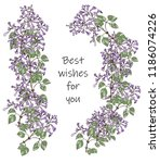 gentle wreath of twigs of lilac ... | Shutterstock .eps vector #1186074226