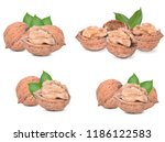 walnuts  isolated on white... | Shutterstock . vector #1186122583