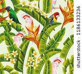 exotic tropical birds parrot in ... | Shutterstock .eps vector #1186133236