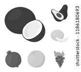 different fruits monochrome... | Shutterstock .eps vector #1186180693